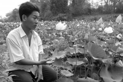 Mao, the Lotus Eater   Credit: June Rubis